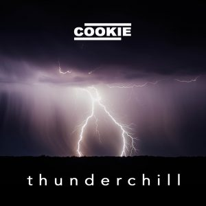 Thunderchill by Cookie Taylor